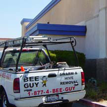 Torrance Bee Removal Guys Service Truck